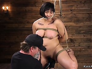 unshaved asian bbw toyed in frog-tie